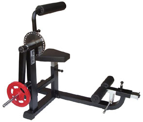 Plate Loaded Abs Machine