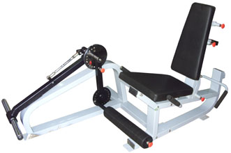 Leg Extension & Leg Curling Plate Loaded